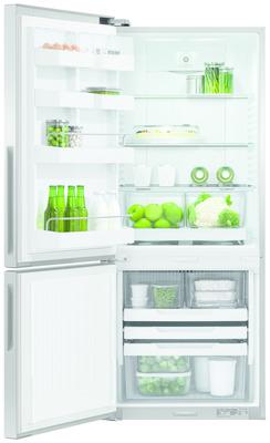 Fisher and Paykel ActiveSmart Fridge - 635mm Bottom Freezer 373L