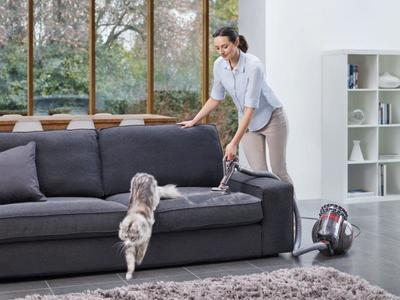 Dyson cinetic big ball absolute %2811%29
