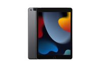 Apple 10.2-Inch iPad Wi-Fi + Cellular 256GB - 9th Gen - Space Grey