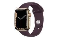 Apple Watch Series 7 GPS + Cellular 45mm Gold Stainless Steel Case Dark Cherry Sport Band